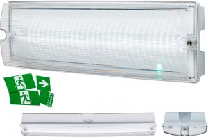 230V IP65 4W LED Emergency Bulkhead